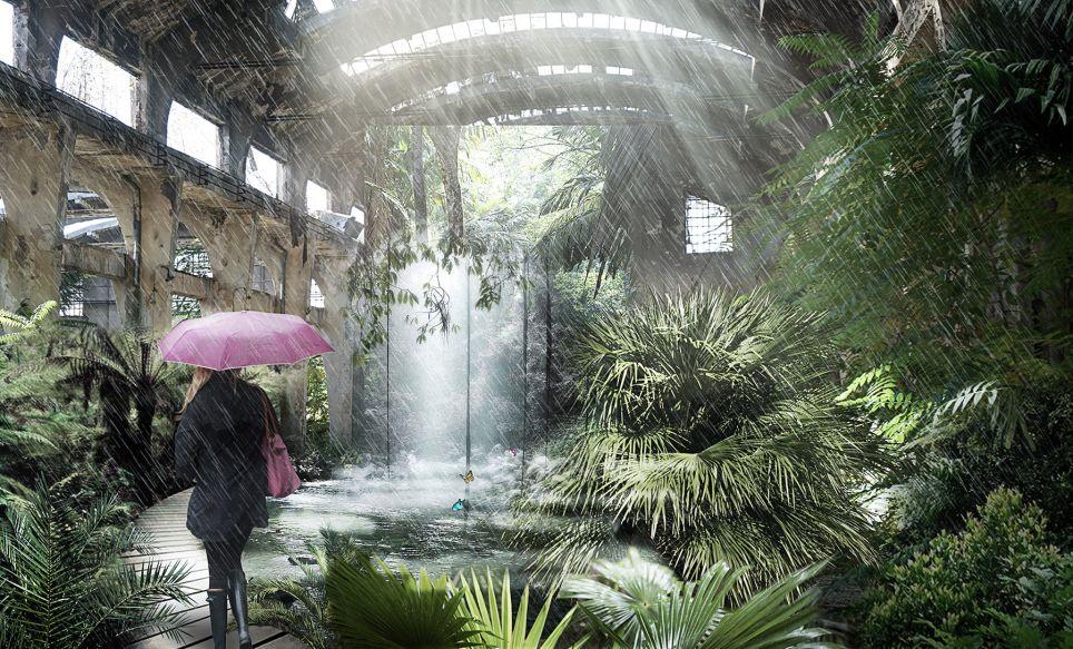 Rainforest-after